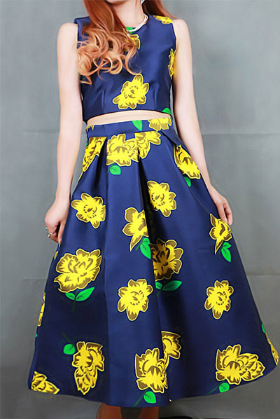 2_Sheinside Blue Sleeveless Embroidered Crop Top With Skirt ($39 usd)
