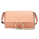 Chloé 'Small Faye' Bag, pink bag, blush bag, light pink bag, light pink shoulder bag, light pink crossbody bag, light pink small bag, blush shoulder bag, blush crossbody bag, blush small bag